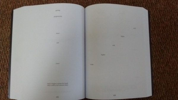 Image result for House of Leaves danielewski footnotes