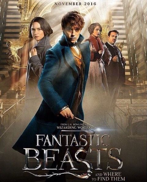 fantastic beasts and where to find them ile ilgili görsel sonucu