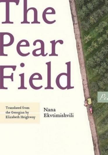 98.-Nana Ekvtimishvili - The Pear Field-3